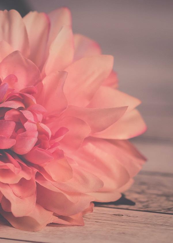 Borító - Örök romantika