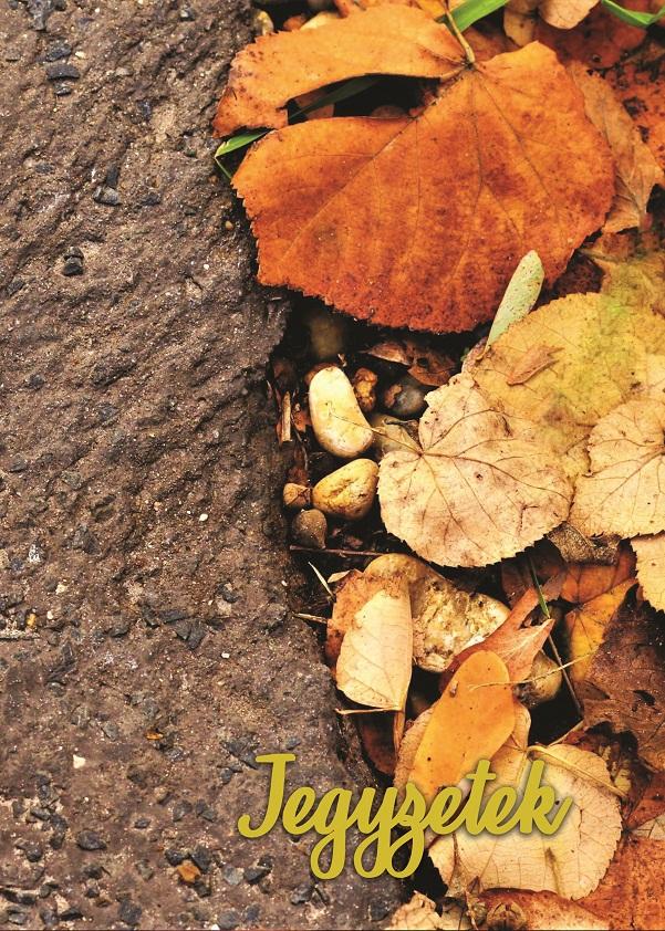 Borító – Őszi levelek