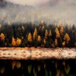 Borító – Őszi tájkép