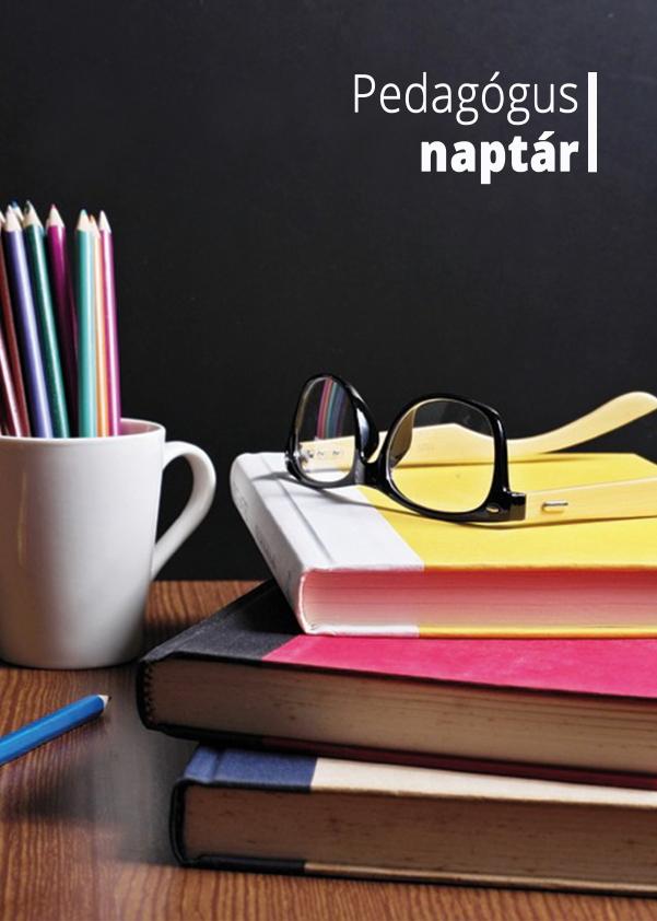 Borító - Pedagógus naplóhoz - Komoly